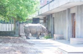 東山動物園@名古屋市
